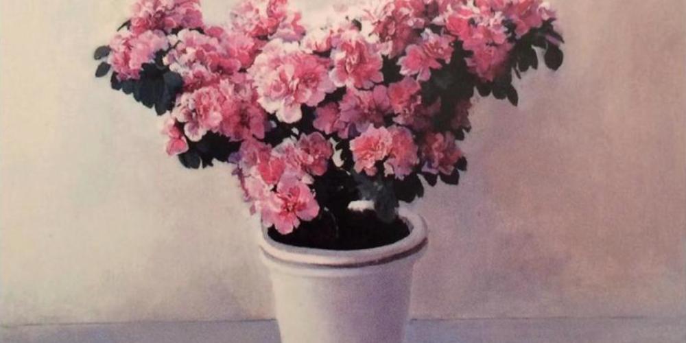 Azaleas rosas, de María Moreno