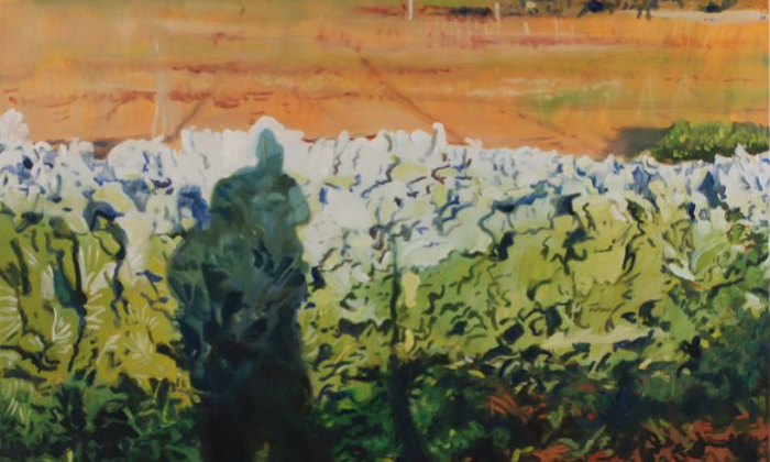 Cabbage Garden, de Daniel Laszlo